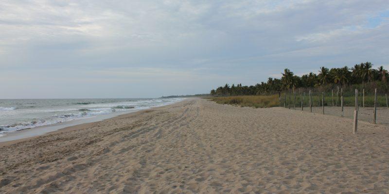 Playa Las Tortugas